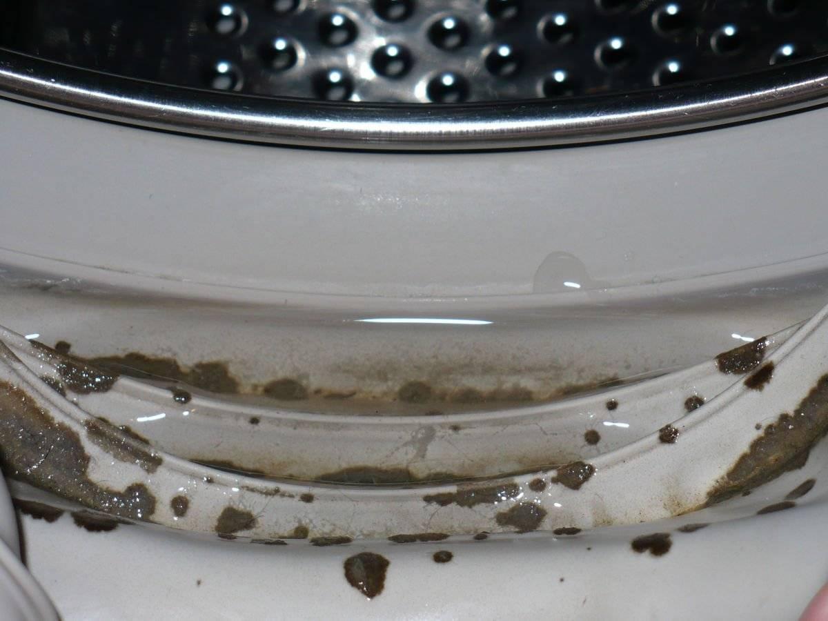 Чистка стиральной машины от плесени: химические средства и народные методы