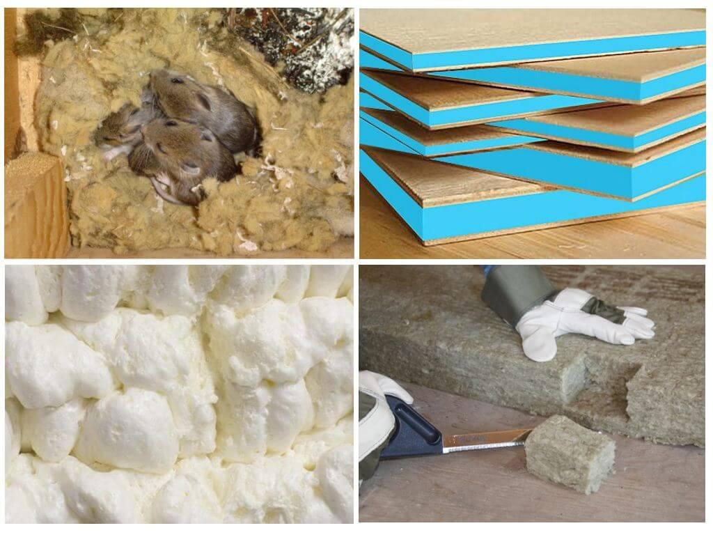 Какой утеплитель не грызут мыши и крысы: живут ли в стеклопакете и минеральной вате?