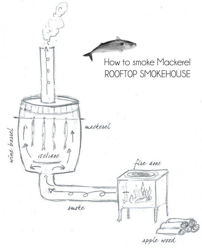 Коптильня холодного копчения (67 фото): как сделать своими руками для дачи, варианты и для горячего способа приготовления, чертежи и размеры