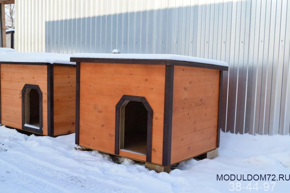 Как и чем утеплить конуру собаке на зиму своими руками + фото