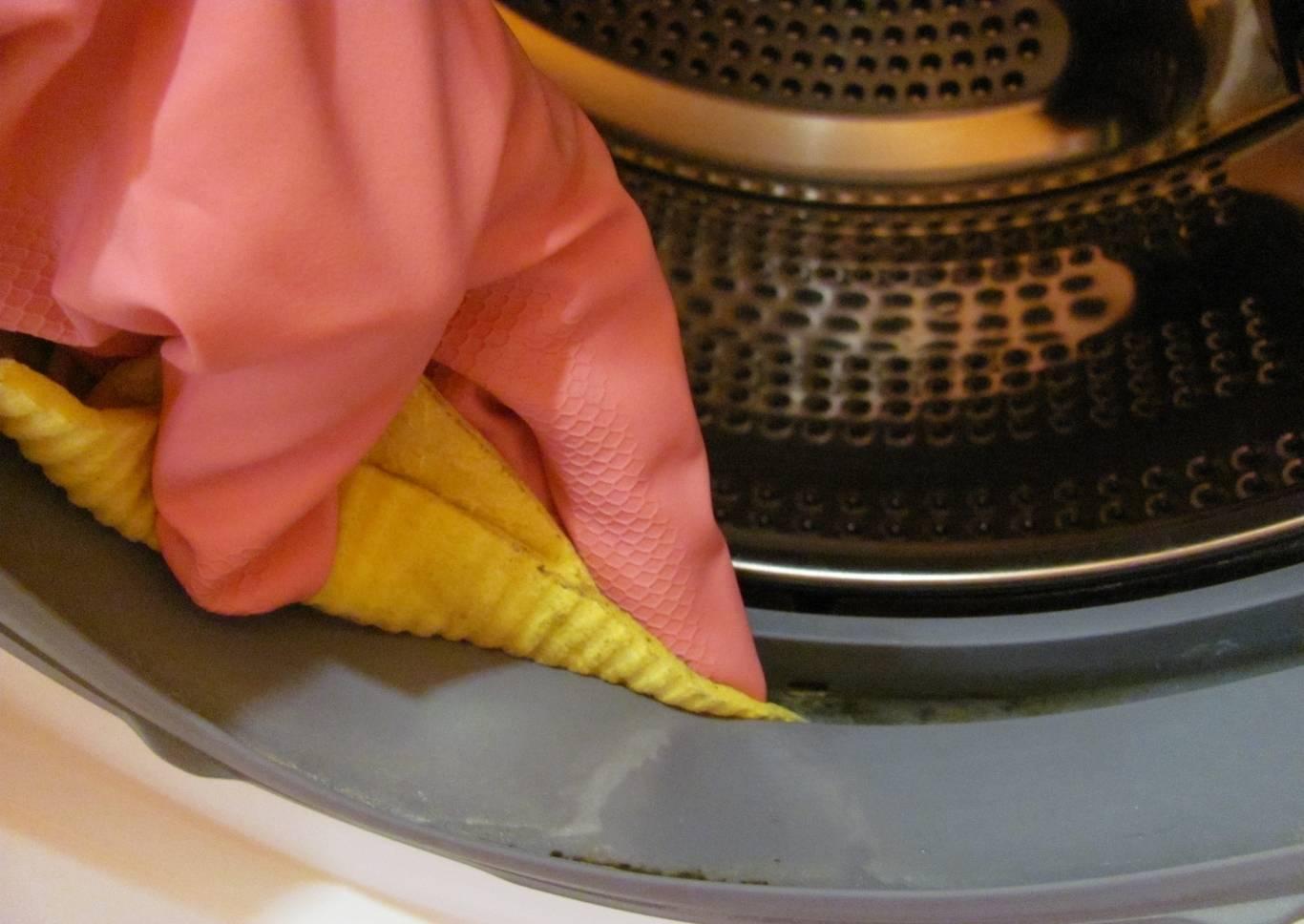 Как избавиться от плесени в стиральной машине — причины появления плесени
