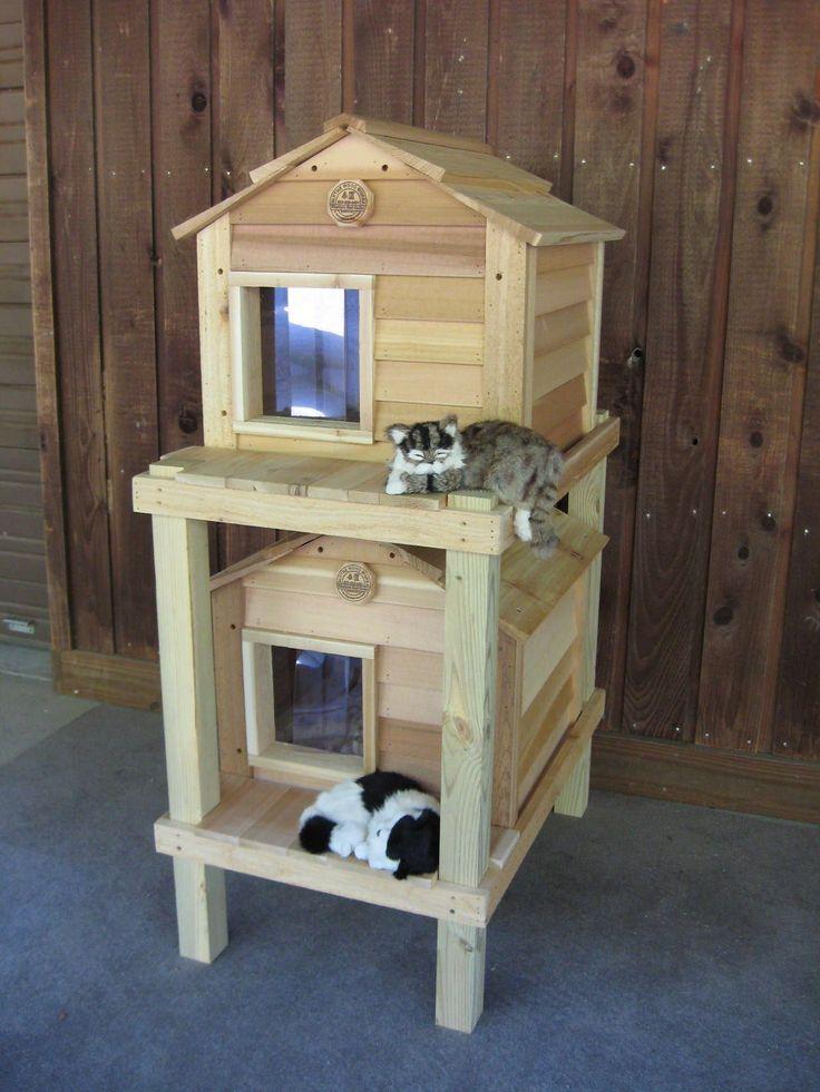 Как утеплить домик для кошки на улице: интересные варианты