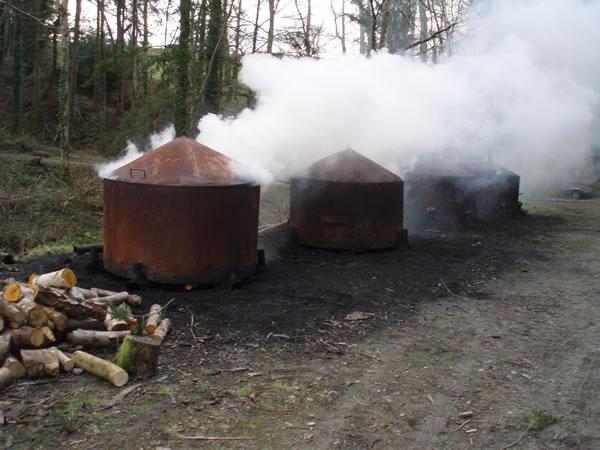 Древесный уголь своими руками: дешевая, простая и эффективная технология изготовления угля (110 фото)