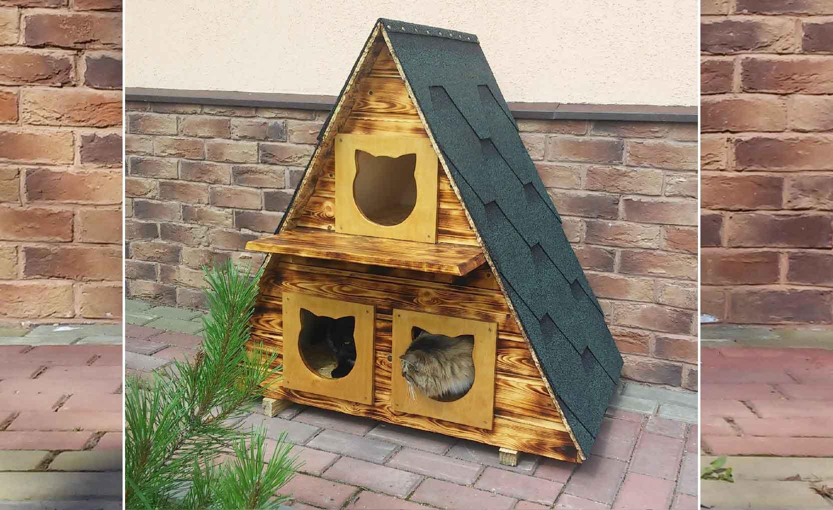 Уличные домики для кошек: будки для котов с подогревом, особенности обустройства зимнего жилища для бездомных котов