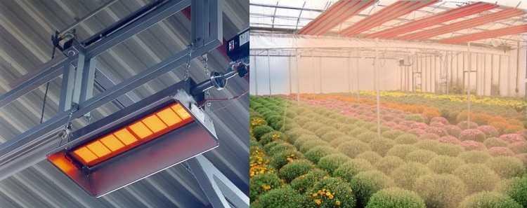 Инфракрасные обогреватели для теплиц: газовый обогрев и отопление лампами, особенности потолочного ик-обогревателя и отзывы об использовании