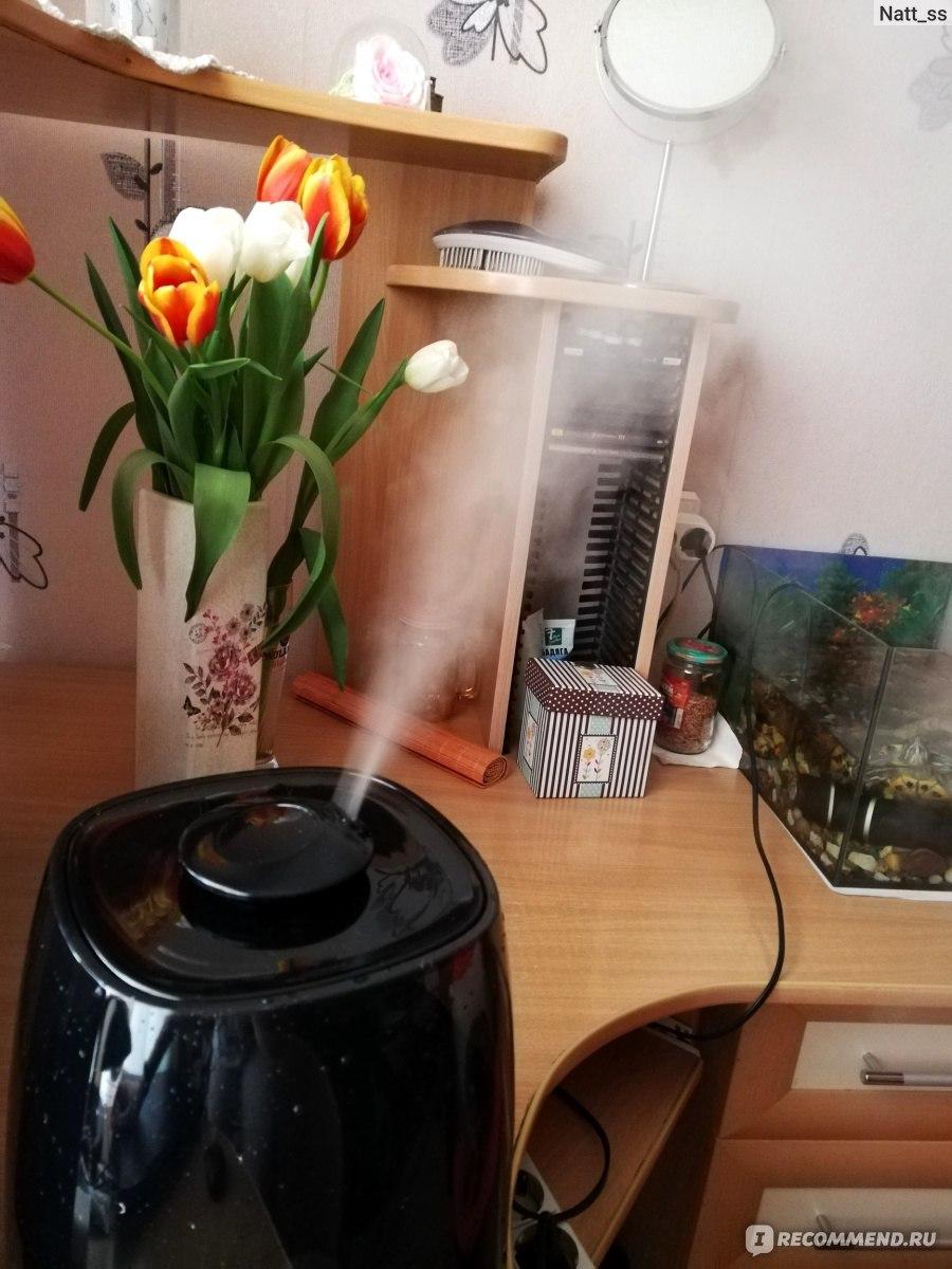 Как увлажнить воздух в квартире без увлажнителя – 6 методов