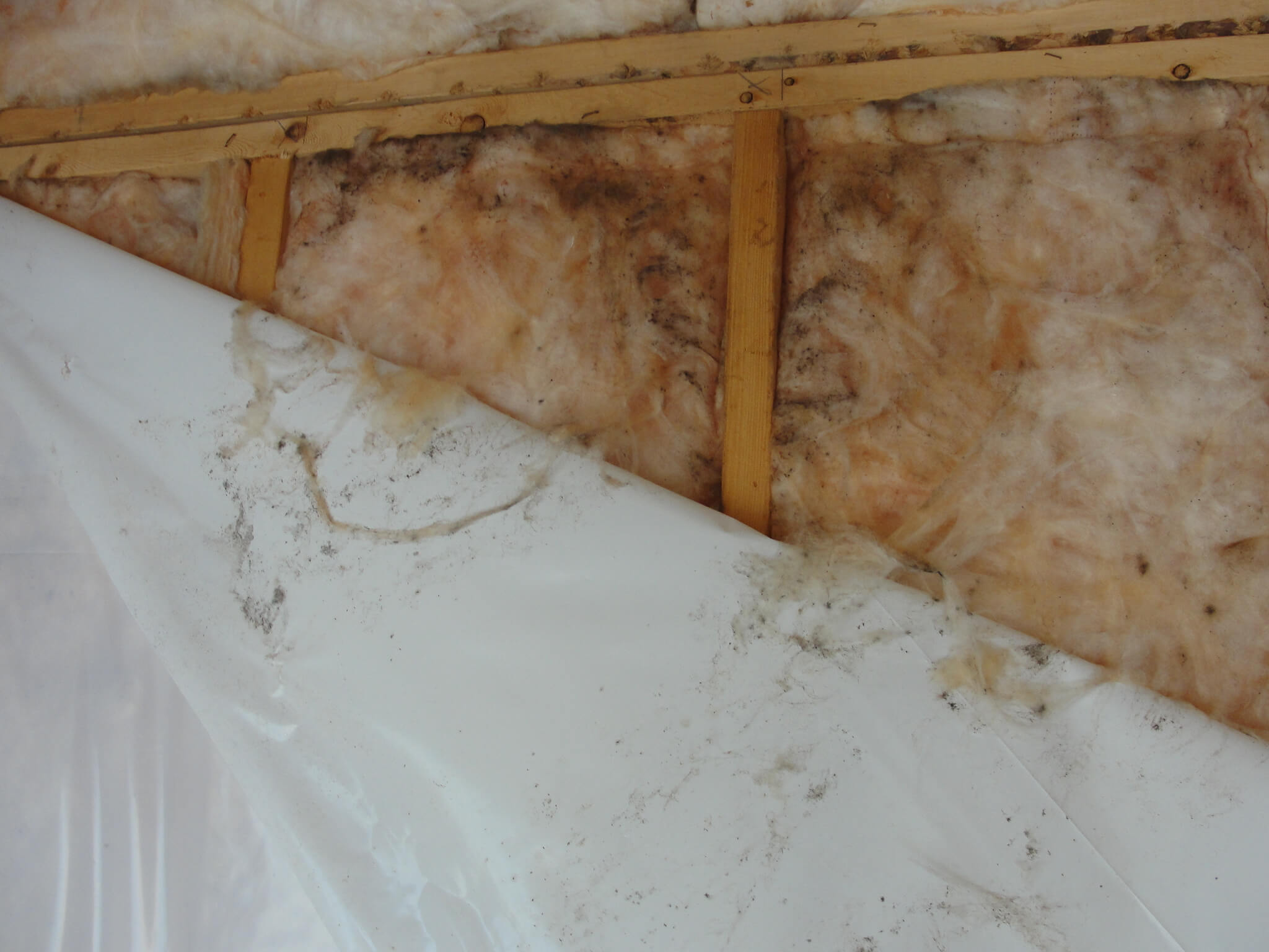 Эффективно или нет утепление стен изнутри минватой