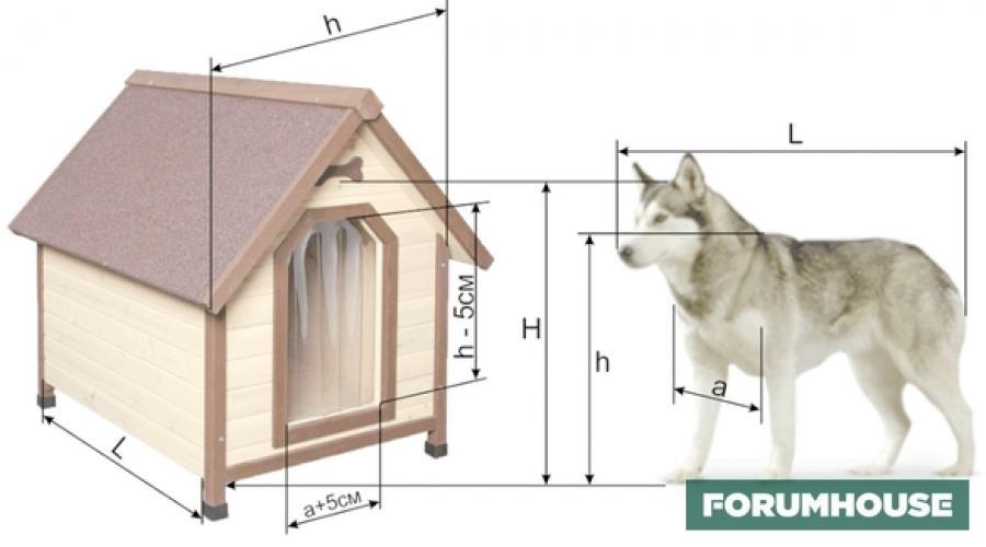 Будка  для собаки своими руками: чертежи и схемы, подробная инструкция