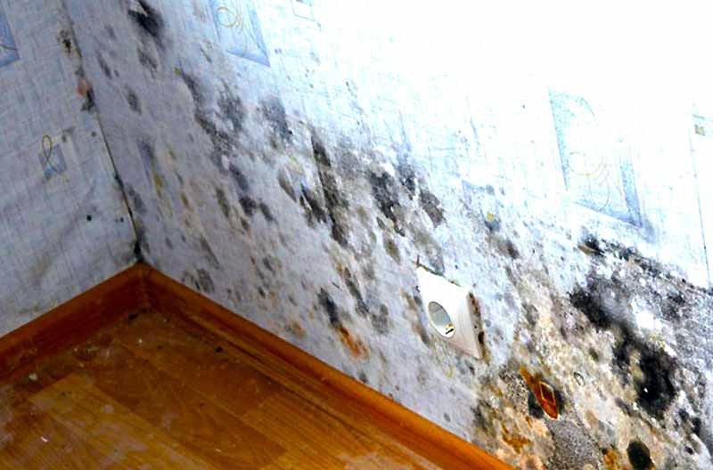 Утепление бетонных стен снаружи и изнутри своими руками