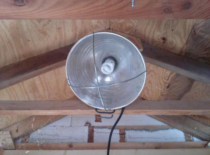 Как обогреть курятник зимой — недорого и без электричества