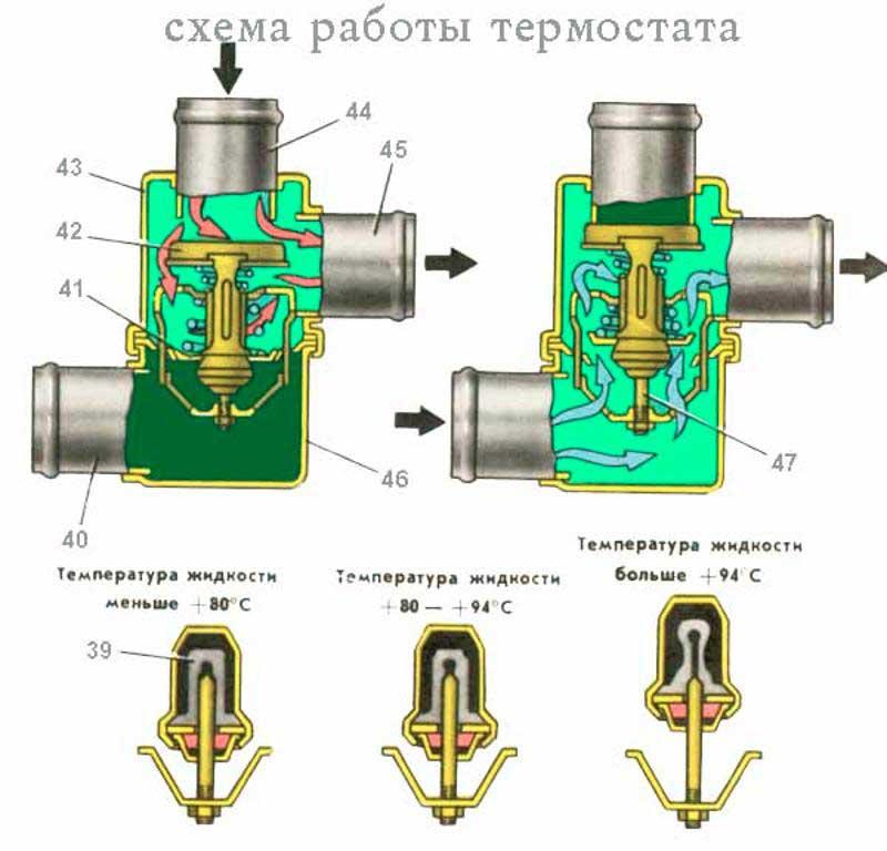 Самодельные терморегуляторы для инкубаторов и схемы сборки своими руками, цифровые приборы и из термостата