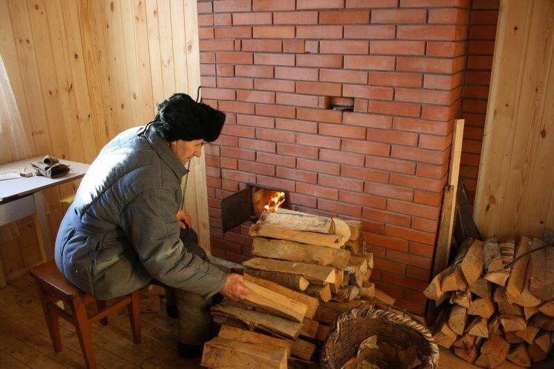 Какими дровами лучше топить печь? обзор всех пород древесины