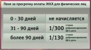 Как оплатить пени по электроэнергии в 2020 году - права россиян