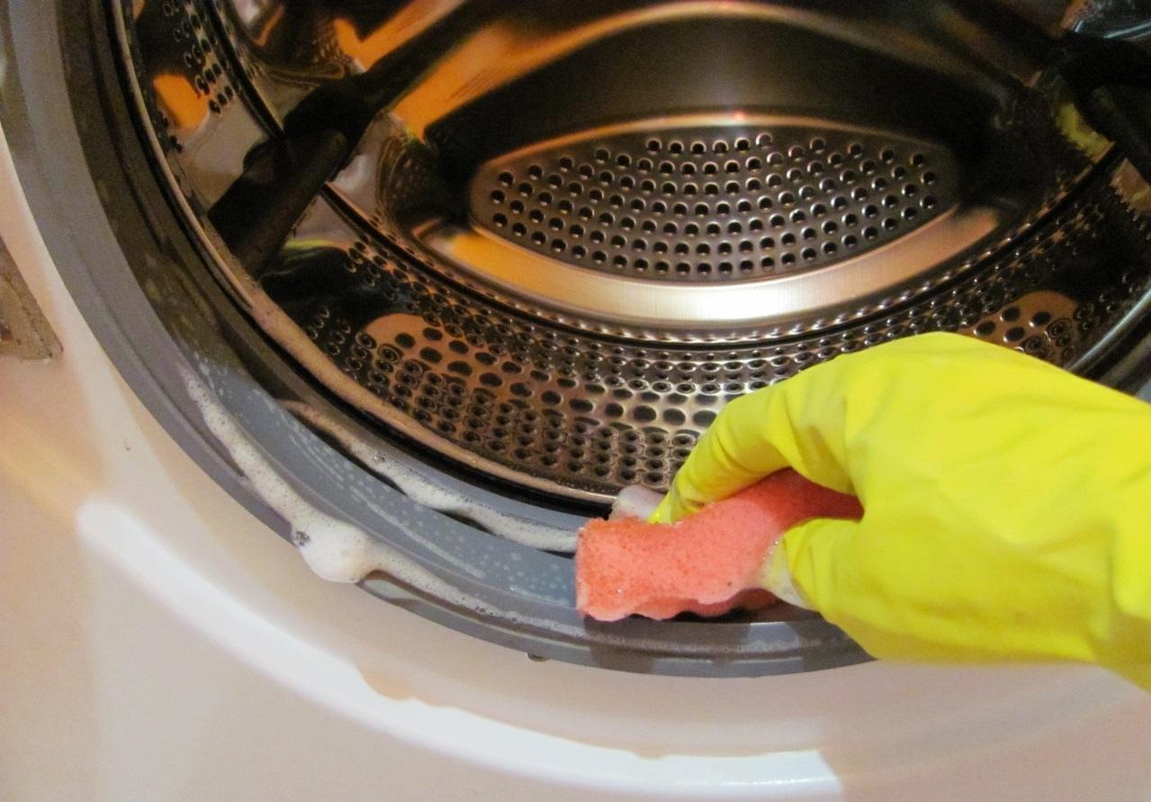 Плесень в стиральной машине: как избавиться в домашних условиях