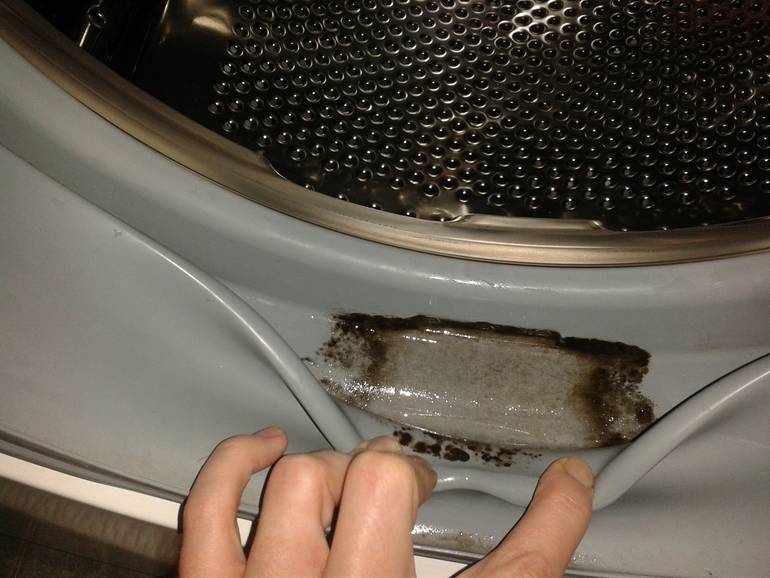 Запаха плесени в стиральной машине: как избавиться, чем вывести грибок