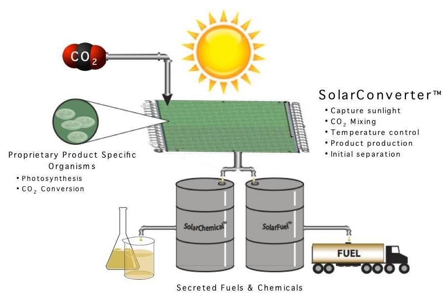 Виды биотоплива: сравнение характеристик твердого, жидкого и газообразного топлива