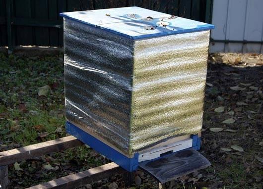 Зимовка пчел: на улице, воле, подготовка к зиме (как зимуют, где зимуют пчелы, что делают?)