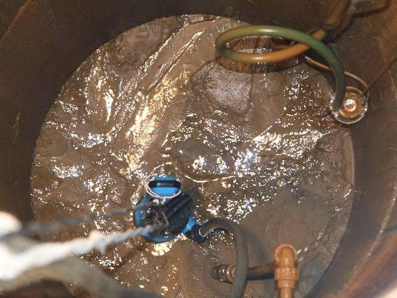 Почему при запуске аквариума помутнела вода? 26 фото что делать, если на второй день после запуска вода стала мутная? причины появления белой мути