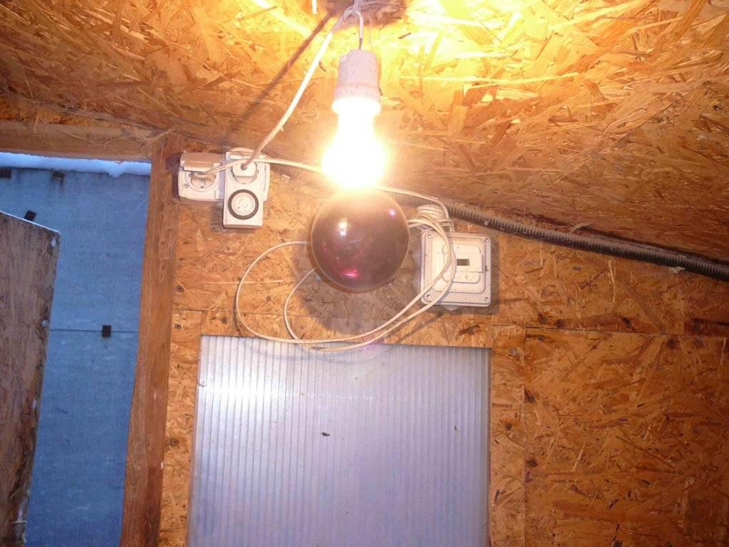 Способы обогрева курятника в зимнее время. рейтинг электрических обогревателей и варианты обогрева без электричества