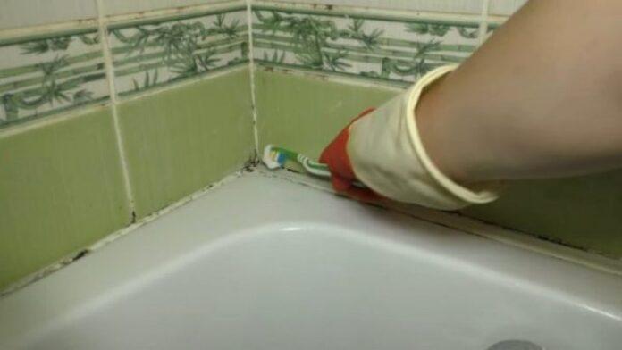 Черная плесень в ванной: как бороться, порядок действий и лучшие средства, как избавиться от черной плесени в ванной,чем обработать, средство,чёрный грибок,чем вывести,средство против,как удалить