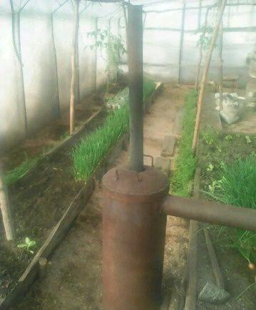 Выращивать цветы и ананасы в январе позволит печь для теплицы длительного горения