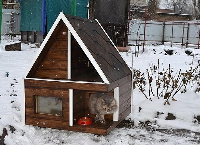 Домик для кошки своими руками: варианты, чертежи, размеры, каноны изготовления - сделай сам - медиаплатформа миртесен