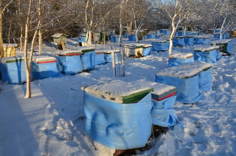 Вентиляция ульев зимой: значение, особенности, правила утепления, как сделать своими руками