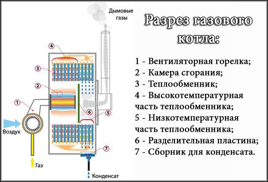 Устройство парового котла: схема, принцип работы, назначение, виды, как работает, из чего состоит, для чего нужен