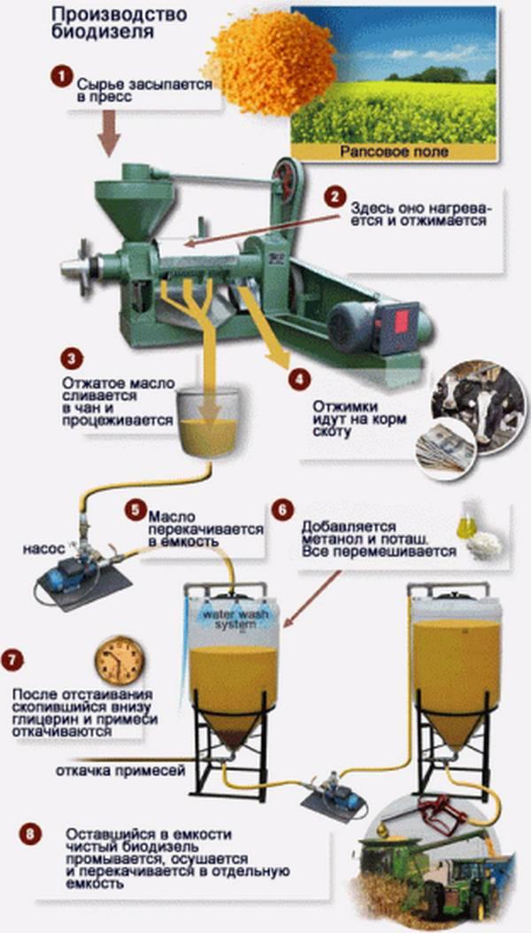 Выйти в свет. почему биодизель уходит в европу, но не приживается в россии? - oilworld.ru - все масла мира