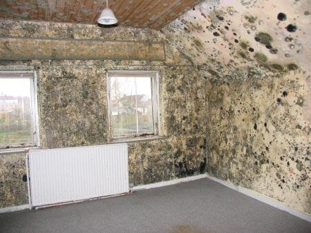 Утепление стены в квартире изнутри