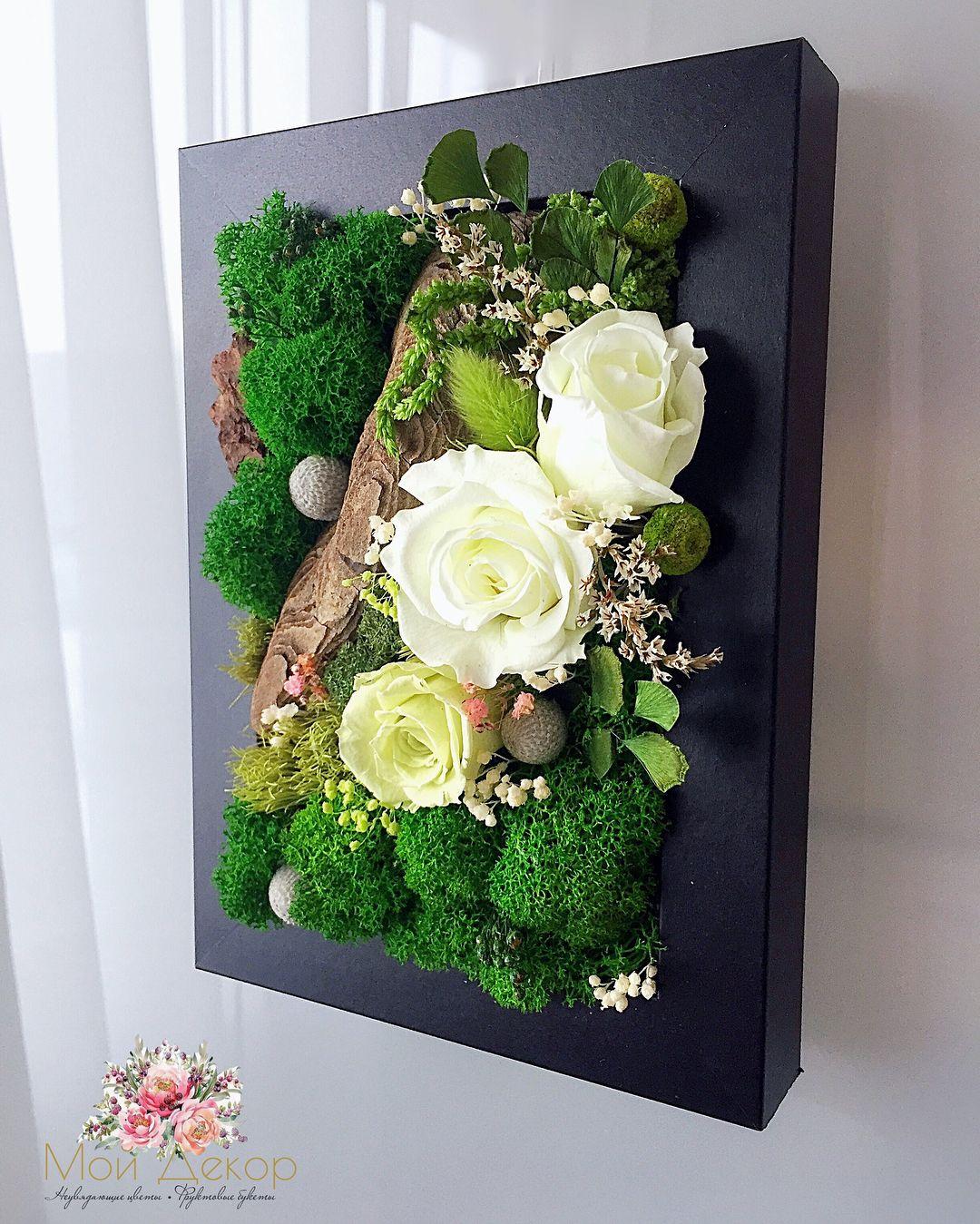 Композиции из горшечных растений для оформления дома, цветочные композиции в горшках из домашних цветов