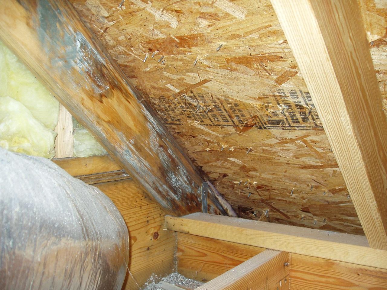 Что делать, если мокнет утеплитель на крыше?