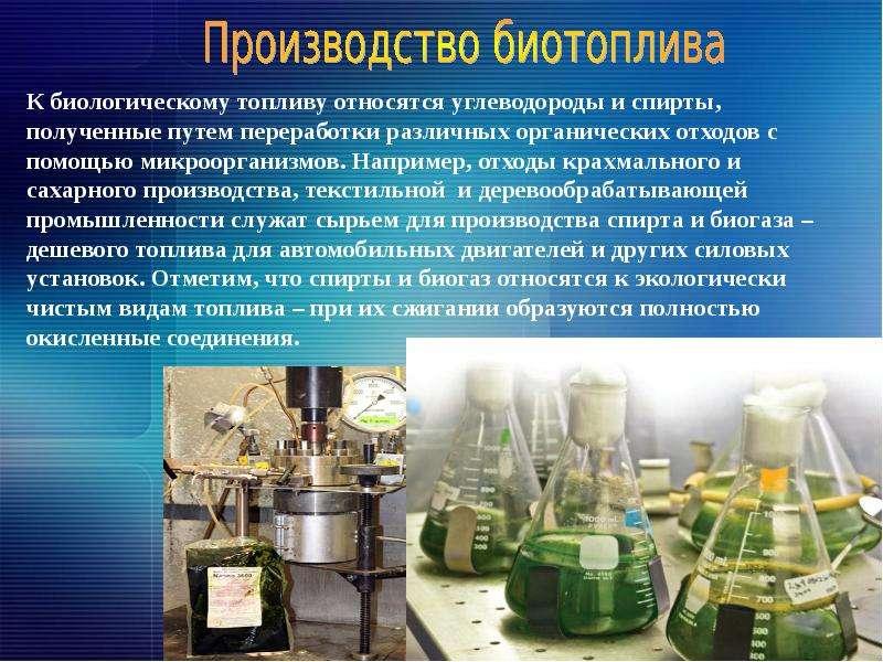 Как открыть производство биодизеля: готовый бизнес-план