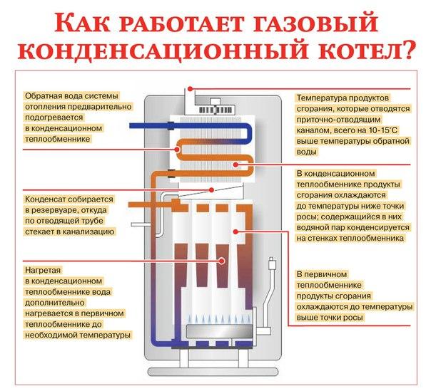 Как устроен газовый котел отопления
