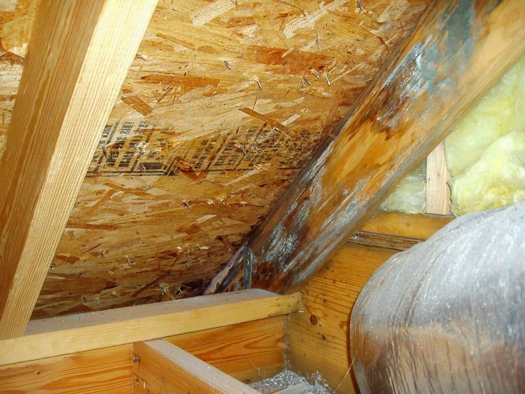 Как использовать обычные опилки для утепления потолка