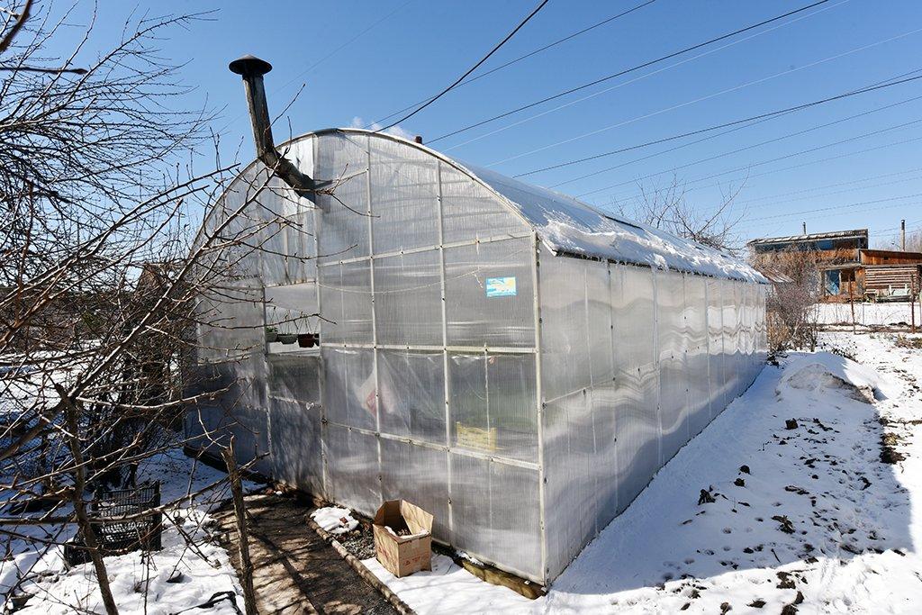 Как обустроить теплицу для зимнего выращивания