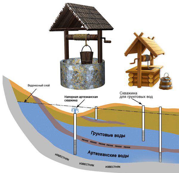Как найти воду на участке: лучшие народные и профессиональные методы