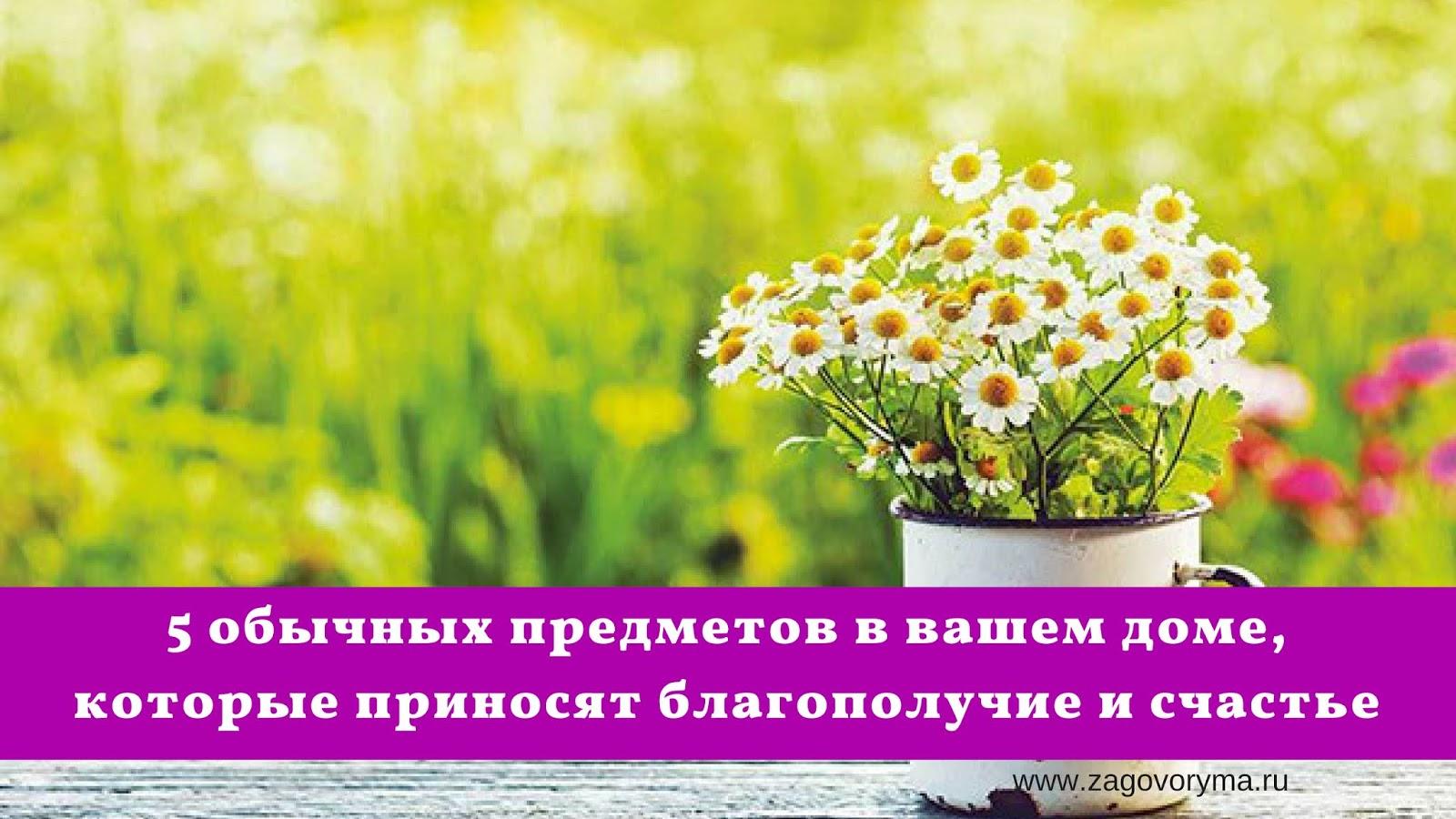 Вещи, которые обязательно принесут в дом счастье