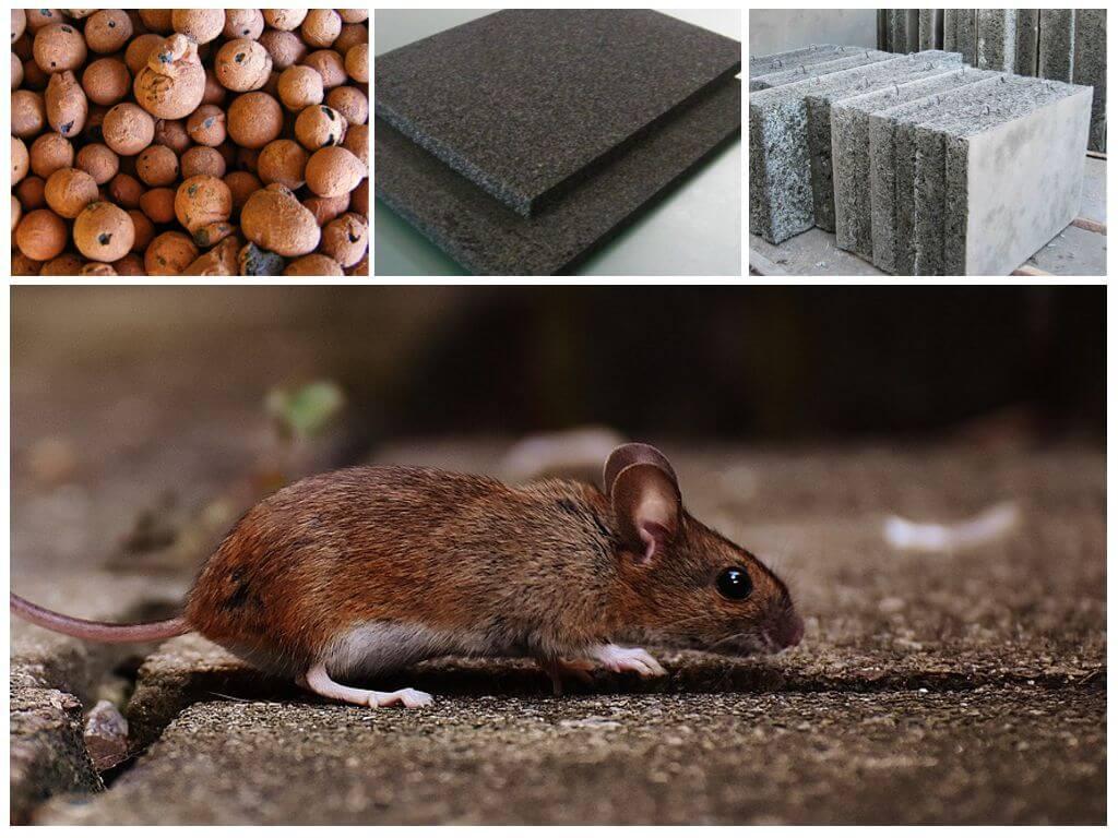 Какой утеплитель не грызут мыши, крысы и другие вредители