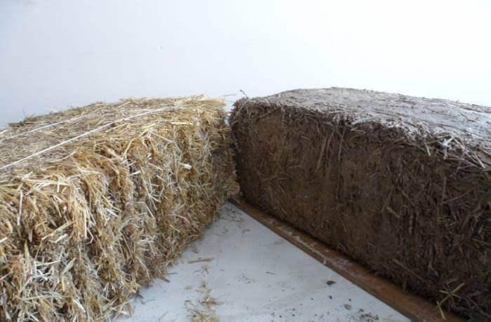 Уникальные свойства глины с опилками – лучшее решение для экодома