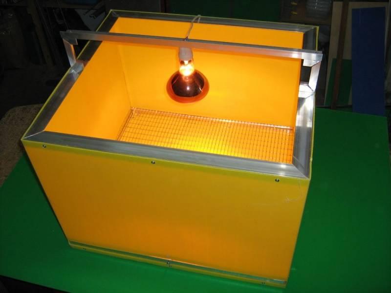 Обогрев для цыплят: создание условий, инфракрасная лампа и другие виды