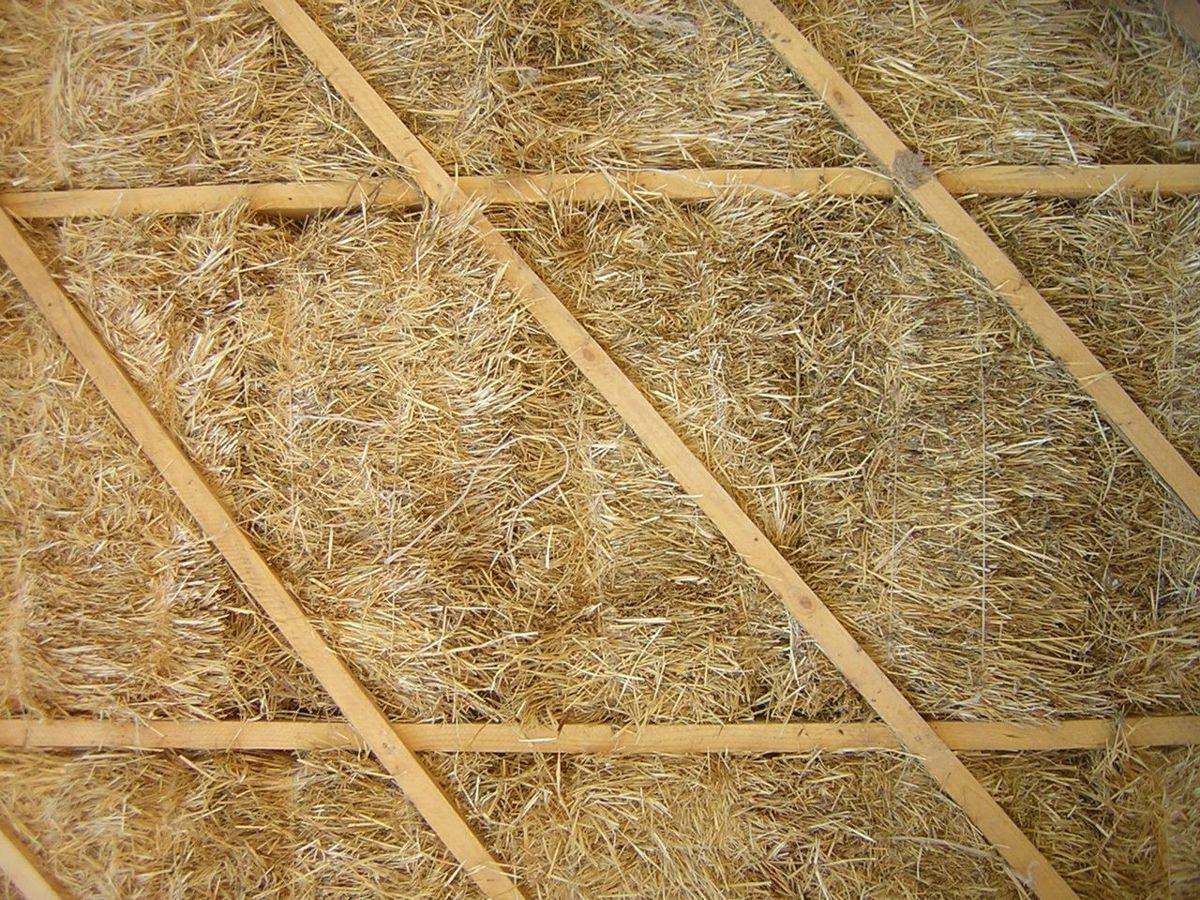 Камышовая крыша — возврат к корням