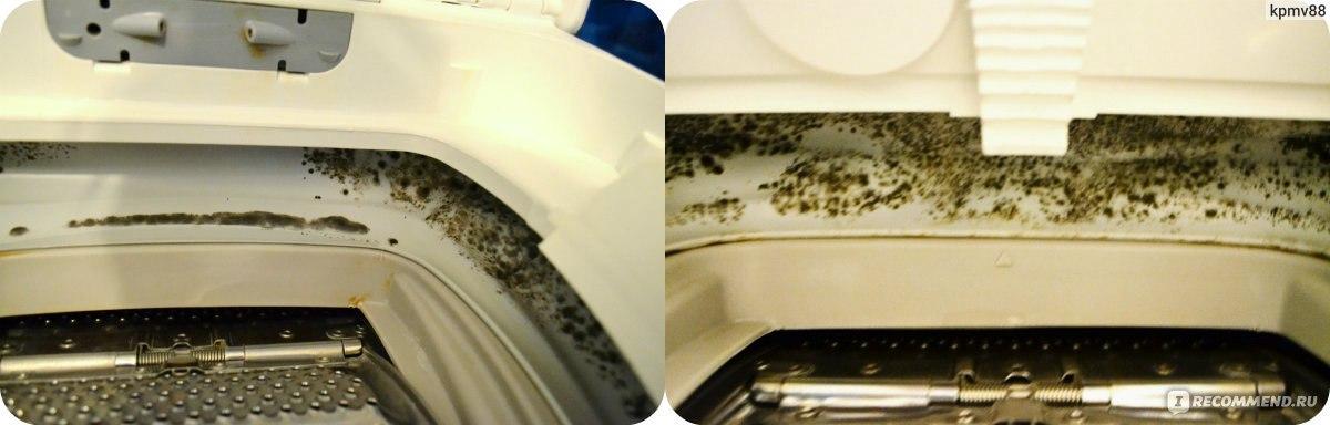 Что делать, если в стиральной машине завелась плесень?