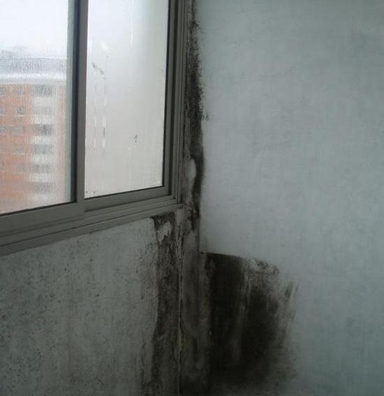 Запотевают окна на балконе что делать: почему потеют лоджии, стекла пластиковые
