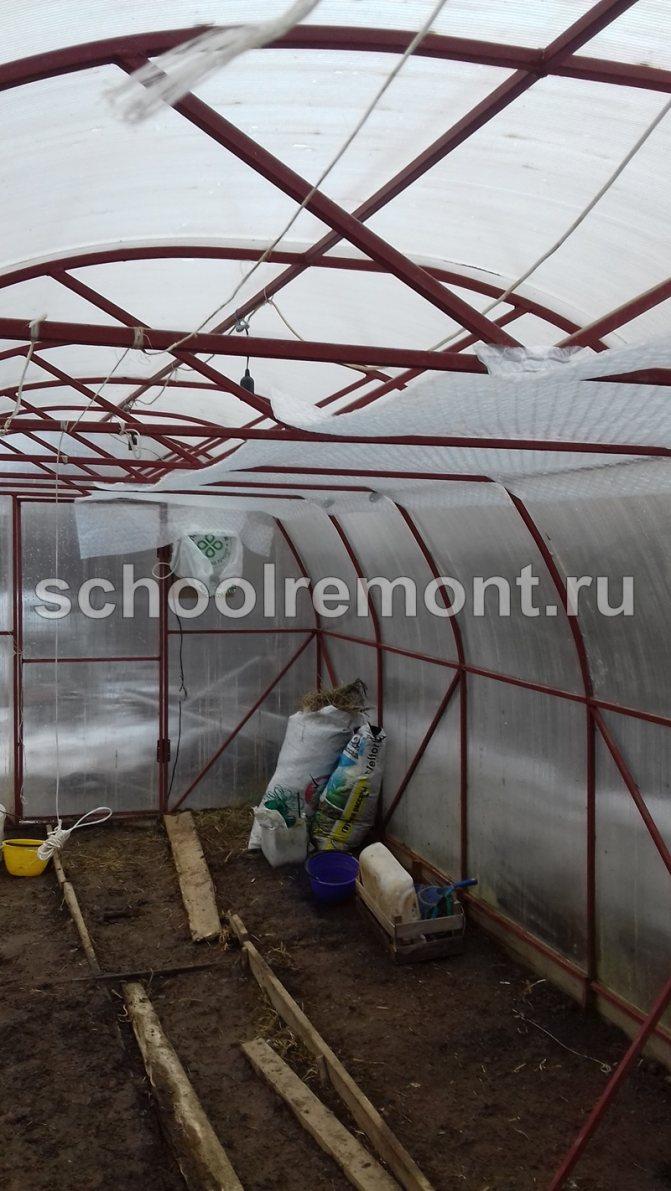 Как выращивать овощи в теплице из поликарбоната с высокой урожайностью: особенности  технологии
