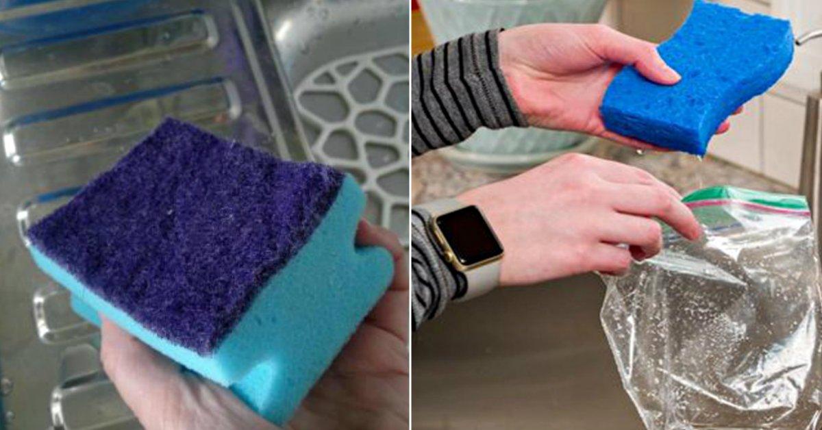 Губки для мытья посуды: избавляемся от бактерий
