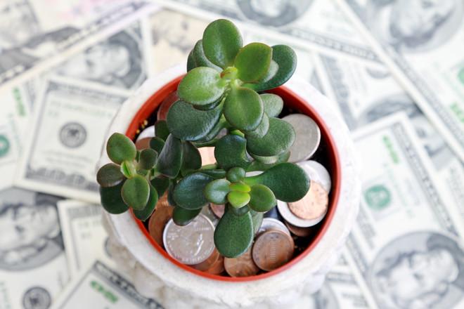 Какие предметы по фэн-шуй привлекают богатство в дом