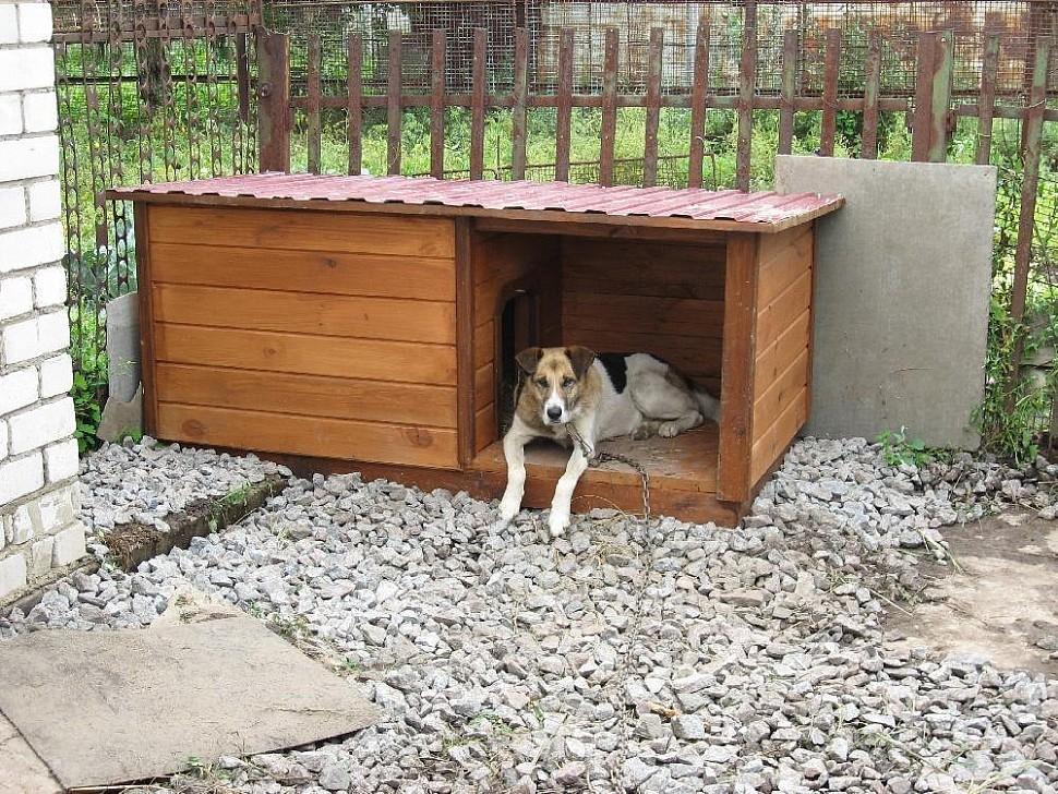 Как утеплить собачью будку, можно ли обогревать собачью конуру