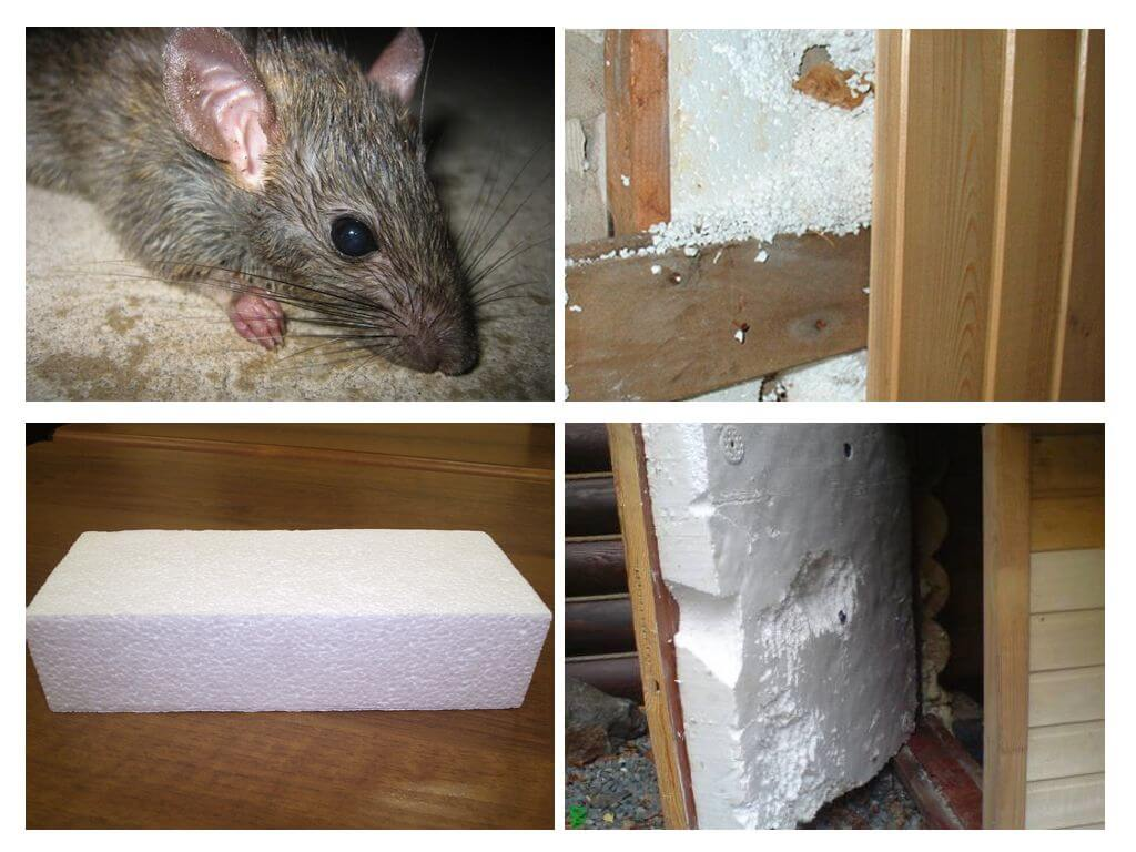 Какой утеплитель не грызут мыши и крысы, разбираемся