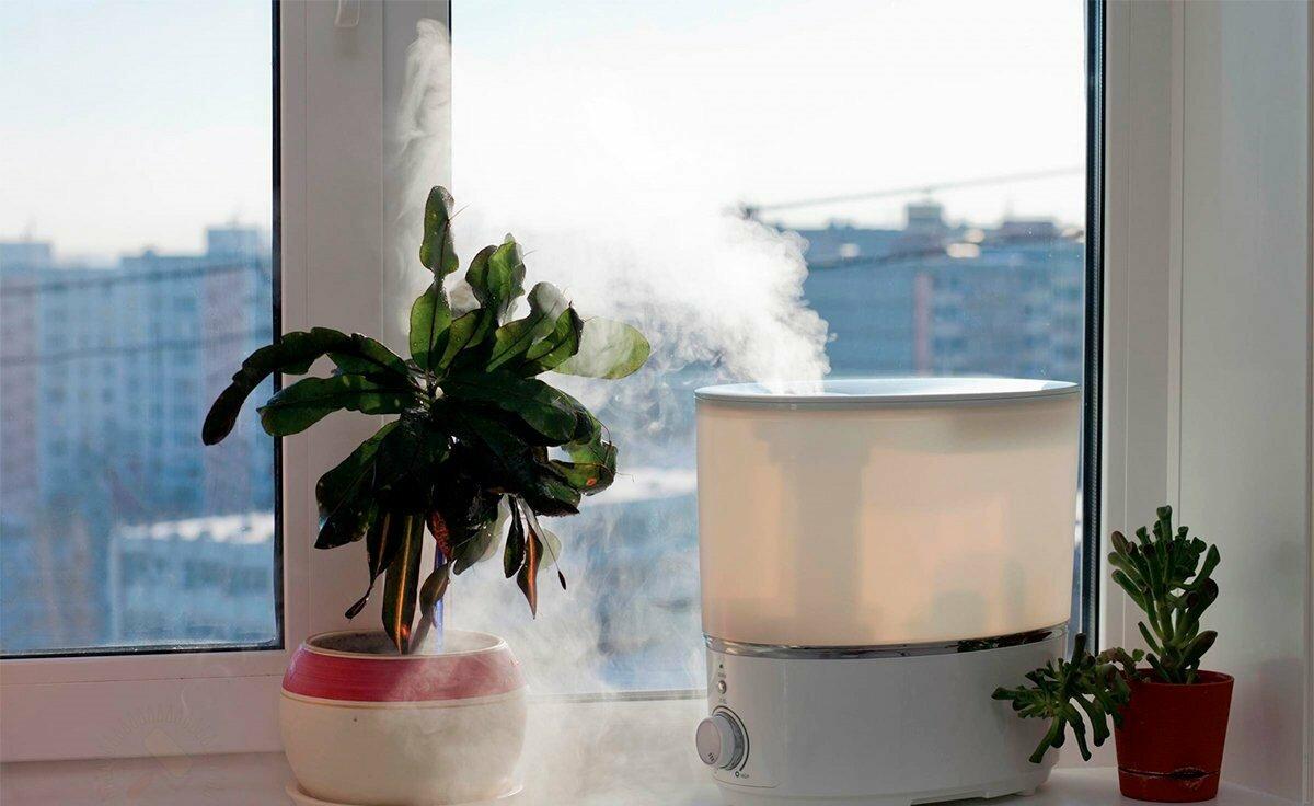 Как увлажнить воздух в квартире — способы без увлажнителя и возможности приборов - женский сайт. интересные статьи для женщин и девушек - медиаплатформа миртесен